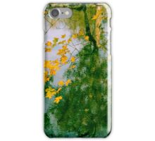 Nature Abstract In Autumn - Natchez Trace iPhone Case/Skin