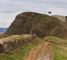 Black Tor in the Peak district by peteton