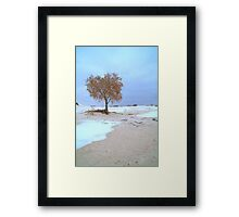 White Sands Lone Tree Framed Print
