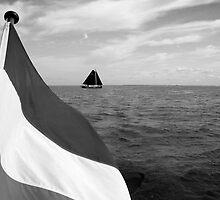 Sailing on the IJsselmeer, The Netherlands by M. van Oostrum