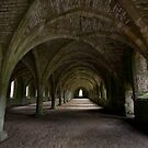 Fountains Abbey - Yorkshire (28-15) by Raymond Kerr
