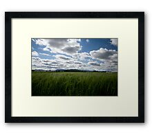 Through the fields after the rain Framed Print