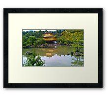 Tranquil healer Framed Print
