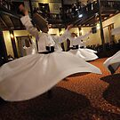 Whirling Dervishes by Peter Hammer