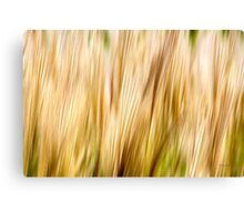 Nature Abstract Fall Grass Canvas Print