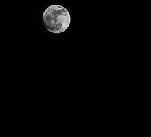 Spring Moon by Tim Trott