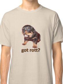 Got Rott? Rottweiler Owner  Classic T-Shirt