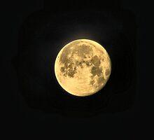 Morning Moon by aprilann
