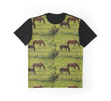 Horses grazing in a buttercup meadow Graphic T-Shirt