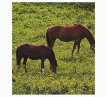 Horses grazing in a buttercup meadow Kids Clothes