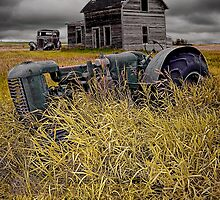 Decline of the Small Farm No 2 by Randall Nyhof