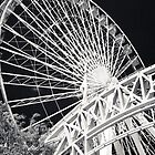 Chicago Black Series--The Wheel by Damian  Christopher Photography