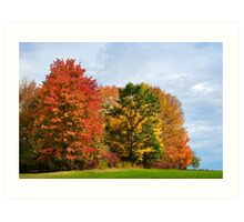 Autumn Colors Fall Trees Landscape Art Art Print