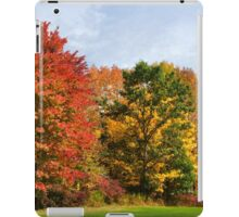 Autumn Colors Fall Trees Landscape Art iPad Case/Skin