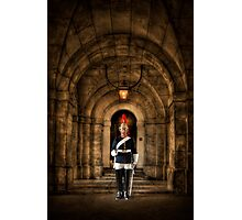 Loyal Royal Photographic Print
