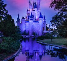 Cinderella Castle by Jason Andruckow