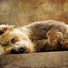 Nap Time by KBritt