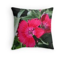 Red Dianthus Throw Pillow