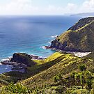 Cape Reinga  by peterperfect