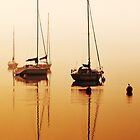 Dead Calm by Robin Brown