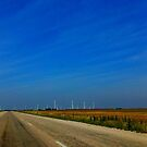The Open Road  by melanie1313