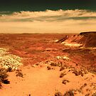 Painted Desert by melanie1313