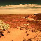 Painted Desert by melanie1313