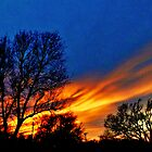 Skies On Fire by Vince Scaglione