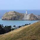 Castlepoint lighthouse, N.Z. by Mike Warman