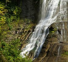 Fall Creek Waterfall Landscape by Christina Rollo