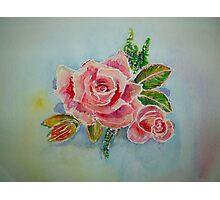Rose Pink Photographic Print