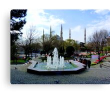 Istanbul: Minarets in the background Canvas Print