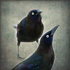 Two little birds by John Trent