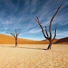 Lifeless in Deadvlei by muzy