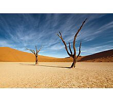Lifeless in Deadvlei Photographic Print