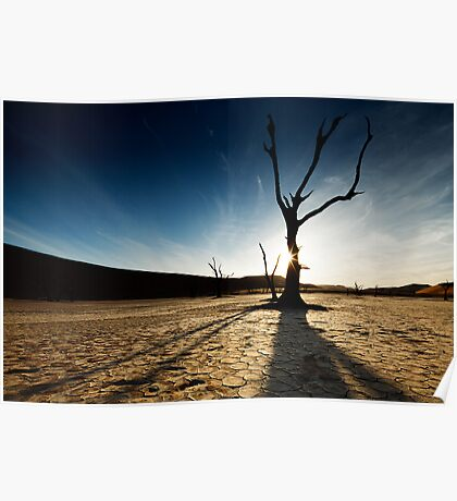 Silhouette at Deadvlei Poster