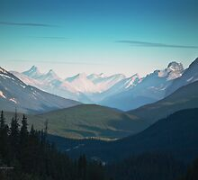 Valley, Banff National Park - Canadian Rockies - Alberta by Yannik Hay