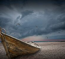 Boat with gulls on the beach with oncoming storm by Randall Nyhof