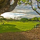 New Farm Park Brisbane by PhotoJoJo