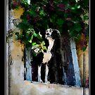 Untitled by RAINY CHASTINE