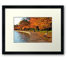 Washington, D.C. Tidal Basin Framed Print