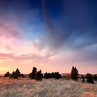 Cape Cod Blue and Gold Sunset by Artist Dapixara