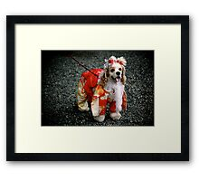 New Year's Puppy Framed Print