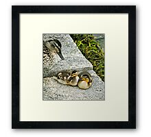 The Mother Hover... Framed Print