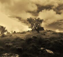 Lonely Hill by seanwareing