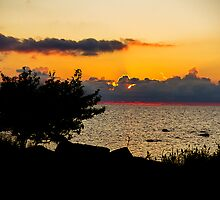 Contrast the Sunset by tutulele