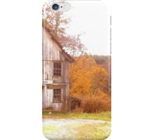 Old Antique Store iPhone Case/Skin