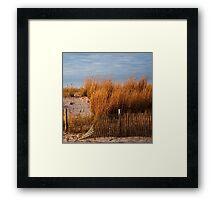Dune Grass & Fence Framed Print