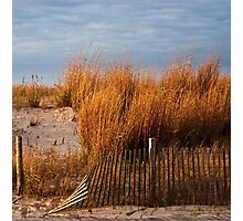 Dune Grass & Fence Photographic Print