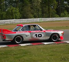 Roger Wills - BMW 3.5 CSL Batmobile by Matt Dean